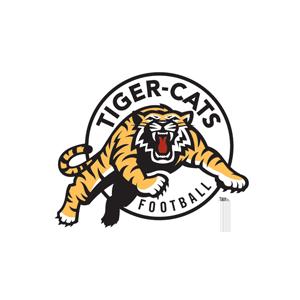 tiger cats